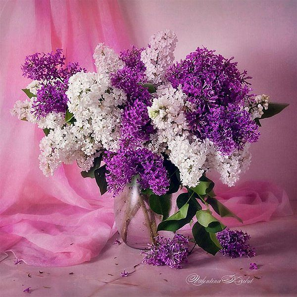flowers-and-vases-02.jpg