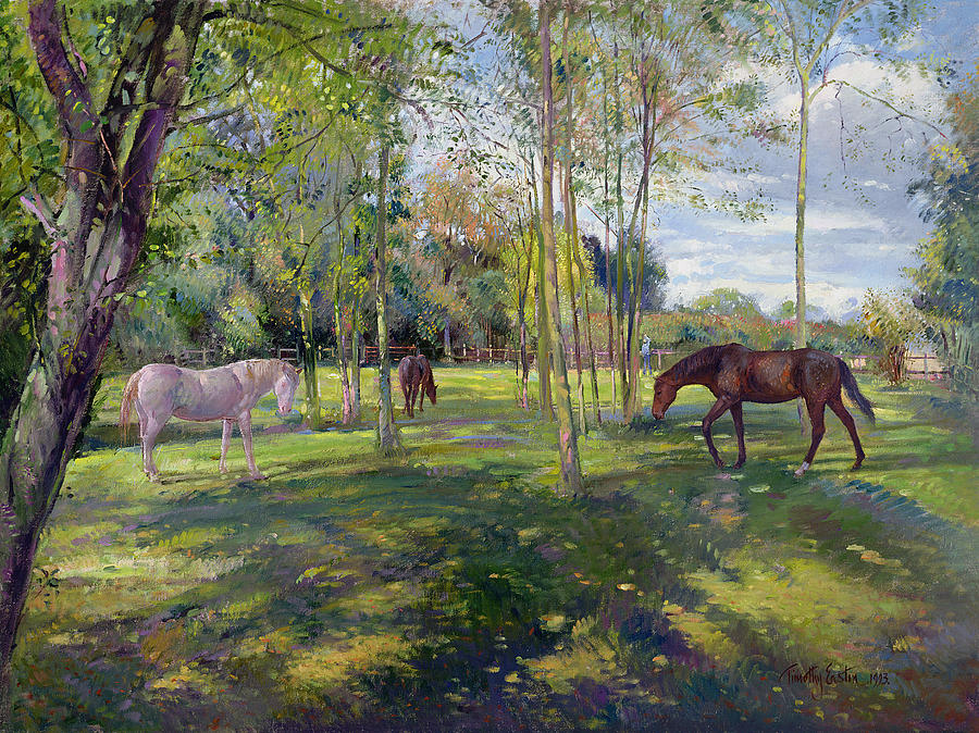 in-the-rectory-paddock-timothy-easton.jpg