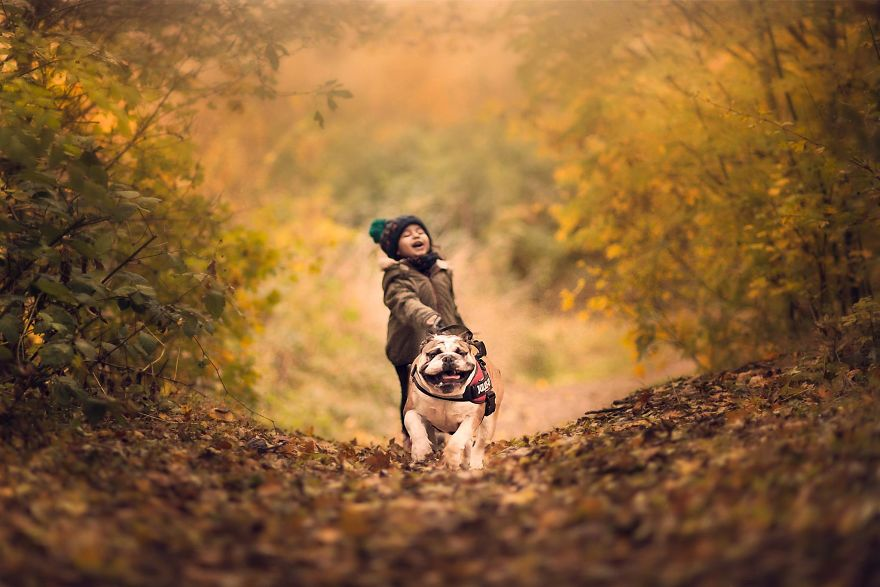 I-tried-photographing-my-daughter-and-my-dog-It-almost-led-to-a-divorce-58e75d48a81e4__880.jpg