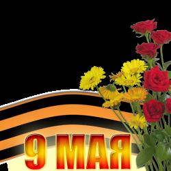 9MAY-26.th.png